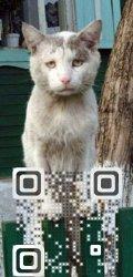 Visual_QR_DO_NOT_RESIZE_BELOW_25mm.jpg
